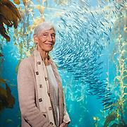 Monterey Bay Aquarium CEO Julie Packard.