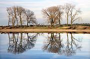 Nederland, Ooij, 24-2-2019 De bizonbaai is een voormalig zandwingat, recreatieplas, waterplas, meertje, baai, langs de rivier de Waal. Onderdeel van staatsbosbeheer. Vanwege het mooie weer op deze dag trekken veel mensen, dagjesmensen, fietsers, er op uit om te genieten van het mooie weer . Op de zomerdijk staan grote hoge bomen. De bisonbaai is onderdeel van de wandelroute, pelgrimsroute, walk of wisdom door het rijk van Nijmegen. Foto: Flip Franssen