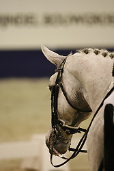 Helgstrand Andreas - Blue Hors Matine<br /> CDI-W 's Hertogenbosch 2007<br /> Photo © Hippo Foto