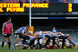 Godlen Masimla of Western Province feeds the scrum during the Currie Cup Premier Division match between the DHL Western Province and the Pumas held at the DHL Newlands rugby stadium in Cape Town, South Africa on the 17th September  2016<br /> <br /> Photo by: Shaun Roy / RealTime Images