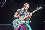 MANCHESTER, TN - JUNE 10: Flea of The Red Hot Chili Peppers performs during the 2017 Bonnaroo Arts and Music Festival on June 10, 2017 in Manchester, Tennessee.