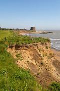 Soft cliffs rapid coastal erosion on North Sea coastline, coast at Bawdsey, Suffolk, England, Uk