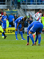 Football - 2018 / 2019 Premier League - Cardiff City vs. Crystal Palace<br /> <br /> Sean Morrison of Cardiff on his knees at the final whistle as Cardiff are relegated , at Cardiff City Stadium.<br /> <br /> COLORSPORT/WINSTON BYNORTH