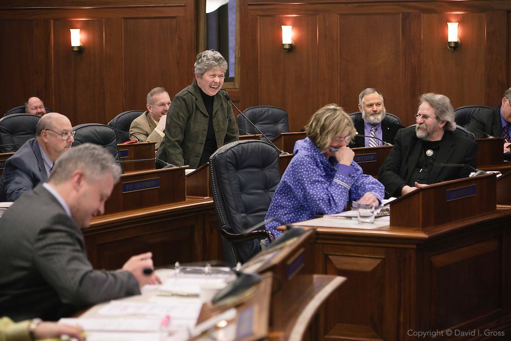 Rep. Sharon Cissna speaks to the Alaska State House of Representatives.
