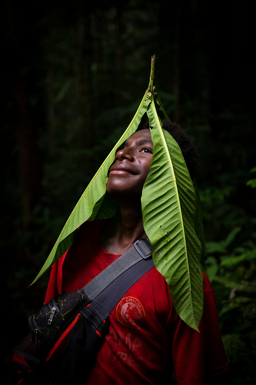 Kukusa, from the village of Likan in Papua New Guinea's East Sepik Province, poses with large leaves while walking in the rainforest near his village.<br /> <br /> (June 21, 2019)