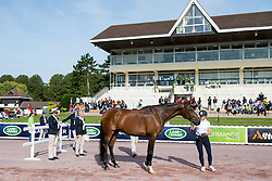 Katja Karjalainen, (FIN), Woikoski Double U - Horse Inspection Para Dressage - Alltech FEI World Equestrian Games™ 2014 - Normandy, France.<br /> © Hippo Foto Team - Jon Stroud<br /> 25/06/14