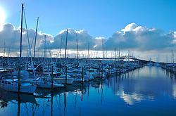 """Auckland também é conhecida como """"City of Sail"""" devido ao grande número de barcos. De acordo com estimativas, a cada 10 habitantes um possu barco ou veleiro. O acumulo de navegações proporciona uma bela imagem na baia de Waitemata. FOTO: Lucas Uebel/Preview.com"""