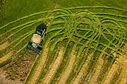 A John Deere combine works to harvest a field near Denmark, Wisconsin.