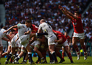 England's Ben Youngs kicks clear under pressure from Wales' Rhys Webb during the The Old Mutual Wealth Cup match England -V- Wales at Twickenham Stadium, London, Greater London, England on Sunday, May 29, 2016. (Steve Flynn/Image of Sport)