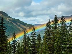 United States, Washington, Crystal Mountain, rainbow in valley through trees.