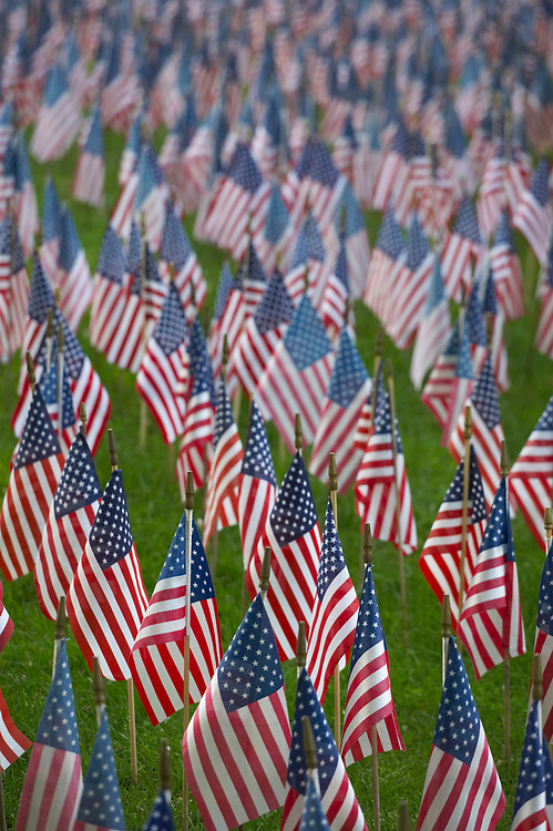 American Flags on Memorial Day on a person's lawn to honor the men who have died in service of their country