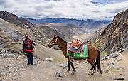 Juan with horse at Yanacon/Yanajanca col (15,100 ft or 4610 m) looks back into Yanajanca Valley. Day 5 of 10 days trekking around Alpamayo, in Huascaran National Park (UNESCO World Heritage Site), Cordillera Blanca, Andes Mountains, Peru, South America.