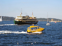 Yellow Water Taxi, Sydney Harbour, Sydney, Australia, 201003260022..Copyright Image from Victor Patterson, 54 Dorchester Park, Belfast, United Kingdom, UK. Tel: +44 28 90661296. Email: victorpatterson@me.com; Back-up: victorpatterson@gmail.com..For my Terms and Conditions of Use go to www.victorpatterson.com and click on the appropriate tab.
