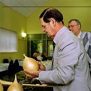 A judge examines a giant onion at Pickering Horticultural Show, Pickering, North Yorkshire, UK