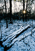 Winter sunset after a rare snowfall - Mississippi