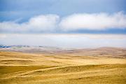 Hills near Augusta, Montana.