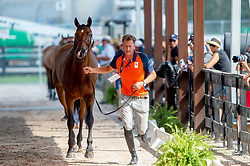Houtzager Marc, NED, Sterrehofs Calimero<br /> World Equestrian Games - Tryon 2018<br /> © Hippo Foto - Jon Stroud<br /> 22/09/2018
