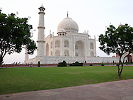 Taj Mahal framed by trees, evening, front view