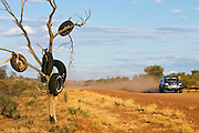 Tyres hang from a tree by the Mereenie Loop Road, Red Centre, Australia -RESERVED USE
