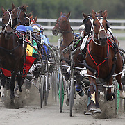 Winton Harness Race Meeting Southland New Zealand