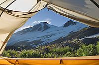 Tent on slopes of Heliotrope Ridge, Mount Baker Wilderness North cascades Washington
