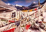 Iced up prayer flags, Dzong Ri, Kangchenjunga 8595 m in distance, Goetcha La trek, Sikkim, Himalaya, India.