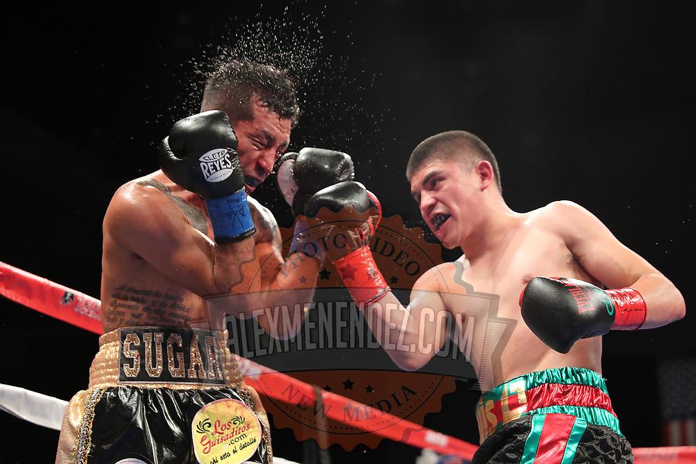 VERONA, NY - JUNE 08: Diego De La Hoya (R) punches Jose Salgado during the Golden Boy on ESPN fight night at Turning Stone Resort Casino on June 8, 2018 in Verona, New York. (Photo by Alex Menendez/Getty Images) *** Local Caption *** Diego De La Hoya; Jose Salgado