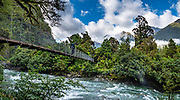 Swing Bridge near Hidden Falls on Hollyford Track, Fiordland National Park, Southland region, South Island of New Zealand. We enjoyed an easy 3-day version of the Hollyford Track: Day 1: fly from Milford Sound to Martins Bay, walk to its oceanfront Hut, and see New Zealand fur seals. Day 2: jetboat on Lake McKerrow to Pyke River Confluence, hike to Hidden Falls Hut for overnight lodging. Day 3: tramp out to Hollyford Road end to our prearranged car shuttle. In 1990, UNESCO honored Te Wahipounamu - South West New Zealand as a World Heritage Area. This image was stitched from multiple overlapping photos.