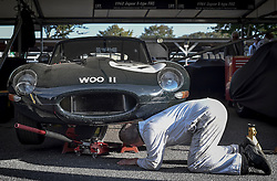 **CAPTION CORRECTION. Picture originally sent with wrong date. Picture was taken TODAY 11/09/2015** © licensed to London News Pictures. 11/09/2015<br /> Goodwood Revival Weekend, Goodwood, West Sussex. UK.<br /> The Goodwood Revival is the world's largest historic motor racing event. Competitors and enthusiasts dress in period fashions recreating the glorious days of the race circuit.<br /> Pictured. A mechanic prepares a 1962 Jaguar for today's racing.<br /> Photo credit : Ian Whittaker/LNP
