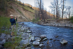 Young boy, Cody Hunter landing a cutthroat trout on the Greybull River in the Abaroka Mountain, south of Cody Wyoming