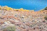 Textured landscape alongs shores of Grant Lake, June Lake Loop, CA.