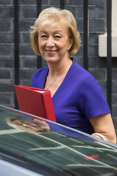 London, June 20th 2017. Leader of the House of Commons Andrea Leadsom attends the weekly cabinet meeting at 10 Downing Street in London.
