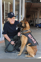 Pretoria, Loftus Versveld Stadium. Rugby Championship. South African Springboks vs New Zealand All Blacks. Corinda Loots from BCI Security with her K9 Chief(3) trained in narcotics and attack. 06-10-18 <br /> Picture: Karen Sandison/African News Agency(ANA)