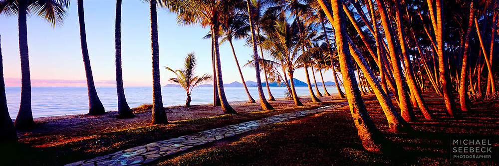 First rays of sunlight on the coconut palms at Palm Cove.<br /> <br /> Code: HAQT0003<br /> <br /> Limited Edition Print