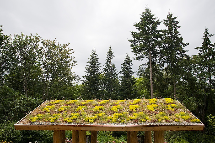 Plants grow on the green roof of a new shelter housing eco-geographic exhibits in the Pacific Connections Garden of the Washington Park Arboretum in Seattle, Washington. The city park, a living museum home to over 20,000 plant species from around the world, celebrates its 75th anniversary this year.