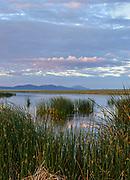 Sunrise over Marsh, Steptoe Valley Wildlife Area, Nevada
