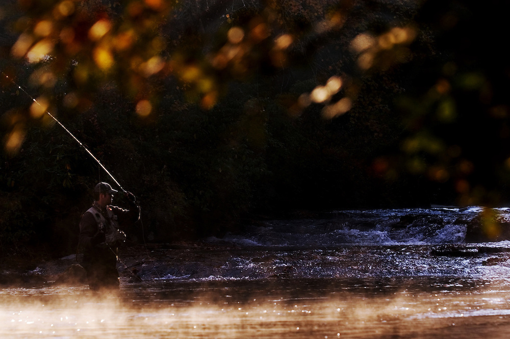Fly-fishing near Brevard, NC