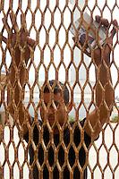 Frustrated Mexican Man Grabbing Tijuana Mexico International Border Fence, Border Field State Park, California, USA