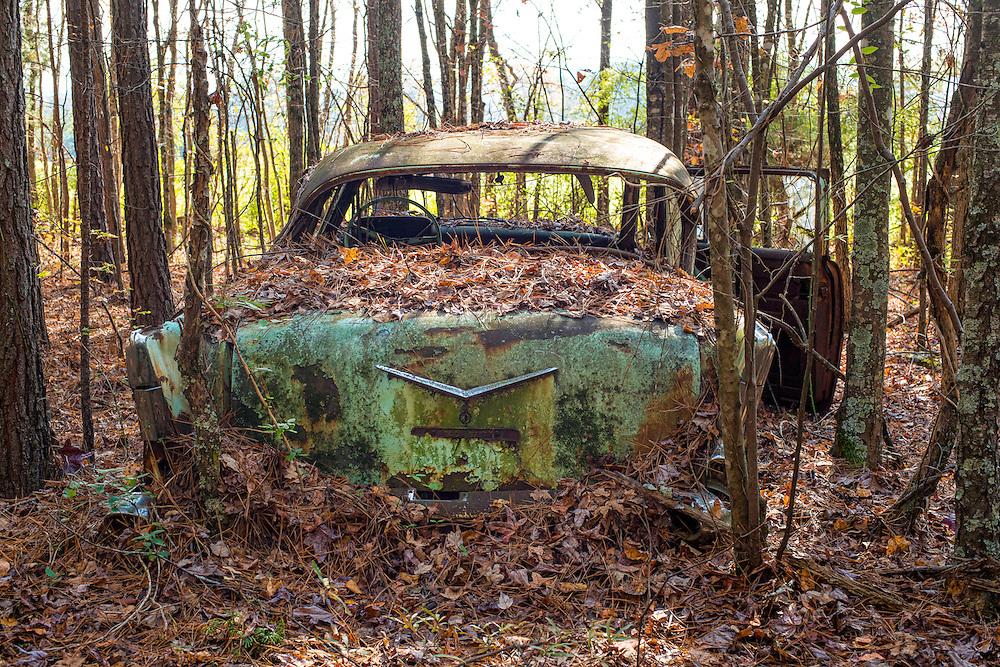 "Vintage Car Graveyard at ""Old Car City USA"" in White Georgia."