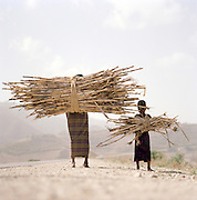 Mother and daughter carrying firewood, Lalibela, Ethiopia.