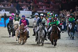 Steeple Chase<br /> Prijs Stad Mechelen<br /> Flanders Christmas Jumping - Mechelen 2012<br /> © Dirk Caremans