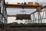 A crane lifts a sugar cane bundle at the Belize Sugar Industries Factory, facility that processes all of the BSCFA's sugar cane. Belize Sugar Cane Farmers Association (BSCFA). Belize Sugar Industries Factory, Orange Walk, Belize. January 22, 2013.