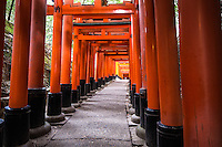 Fushimi Inari Shrine Taisha sits at the base of Inari Mountain where there are trails up the mountain leading to many smaller shrines. Inari has been seen for centuries as the patron of business, and merchants and manufacturers have traditionally worshipped here. Proof of this is that all of the hundreds of torii at Fushimi Inari Taisha have been donated by a business. The earliest structures were built in 711 on the Inariyama hill in southwestern Kyoto. Foxes are regarded as messengers and found at Inari shrines. One attribute is a key - for rice granaries - in their mouths as Inari is the Shinto god of rice.