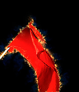 Digitally enhanced image of the red communist movement flag flying high during a protest