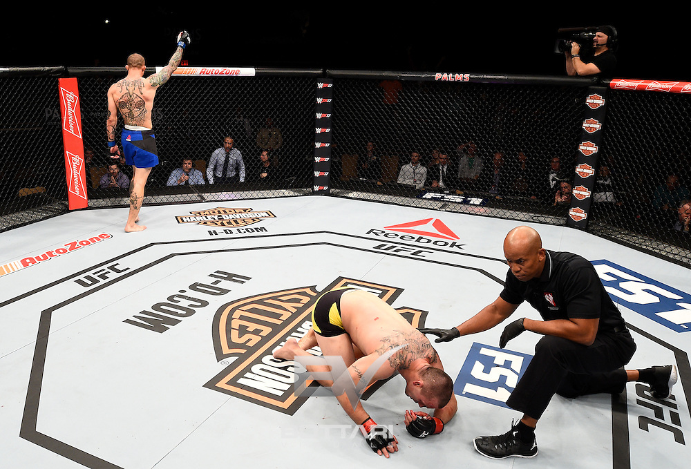 LAS VEGAS, NV - DECEMBER 03:  Anthony Smith celebrates his knockout victory over Elvis Mutapcic of Bosnia in their middleweight bout during The Ultimate Fighter Finale event inside the Pearl concert theater at the Palms Resort & Casino on December 3, 2016 in Las Vegas, Nevada. (Photo by Jeff Bottari/Zuffa LLC/Zuffa LLC via Getty Images)