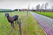 Nederland, Halle, 7-1-2019Transformatie van boerderij, varkenshouderij en akkerbouw, naar kleinschalig ondernemen in de zorg. Omgebouwde varkensschuren bieden onderdak aan kinderen, jongeren, die via jeugdzorg opvang nodig hebben .Foto: Flip Franssen