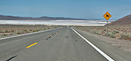 a dancing cow highway sign along US 50 the Austin Highway aka the loneliest road in America where the road approaches a dry lakebed (Lake Lahontan) east of Fallon, Churchill county, NV, USA panorama