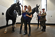 © Licensed to London News Pictures. 02/05/2013. London, UK (left to right) horses Isaiah and Fortune are inspected by groom Grace Shayler. The Household Cavalry receive a horse health check at Hyde Park Barracks from pet charity Blue Cross in order to encourage horse owners to take part in the National Equine Health Survey (NEHS). Photo credit : Stephen Simpson/LNP