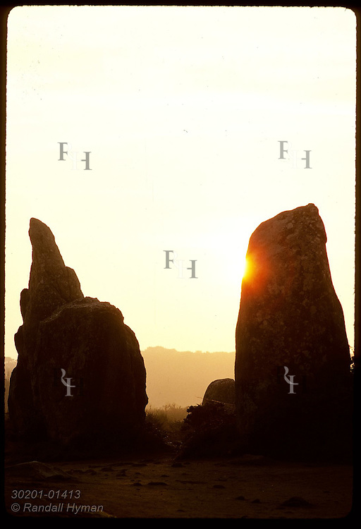 Prehistoric megaliths- 'menhirs'- at Carnac in the Morbihan, Brittany; Kermario site. France