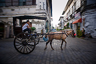 Kalesa on the street of Vigan.<br /> Ilocos Sur and Ilocos Norte are the Filipino provinces situated on Luzon Island and famous for heritage town of Vigan, windmills of Bangui, white sand beach of Pagudpud not to mention former president Marcos, who was born there.